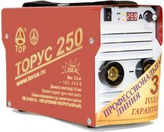 Сварочный инвертор Торус 250 (ПДУ)