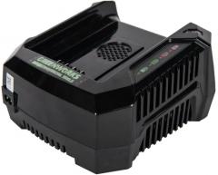 Зарядное устройство Greenworks G 82 C